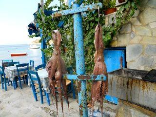 poulpes frais
