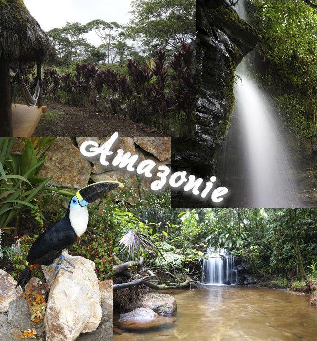 amazonie equatorienne