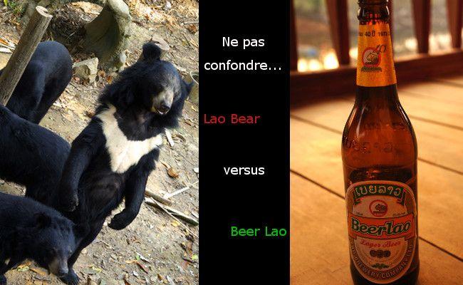 Beer Lao and lao bear