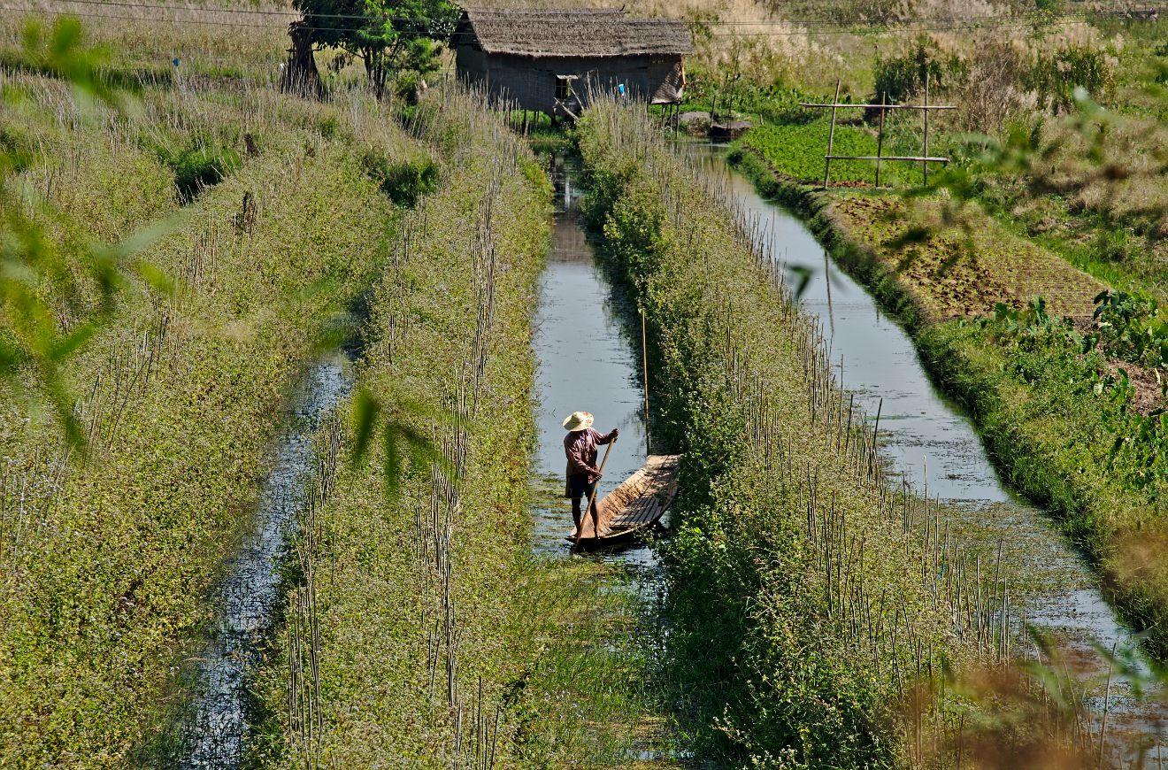paysan birman au travail
