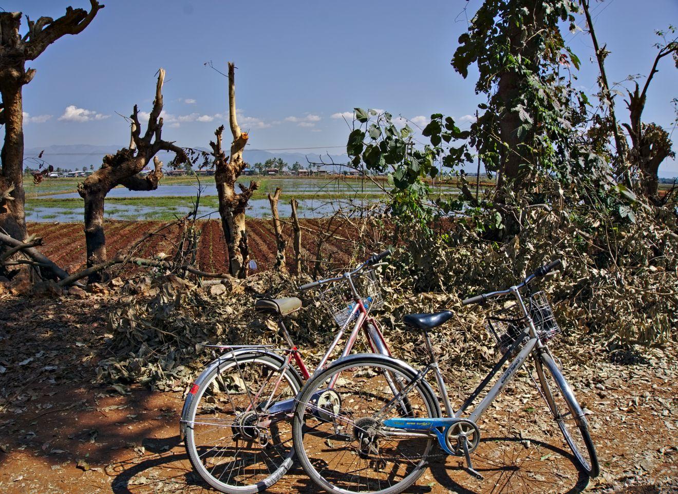 tour du lac inle à vélo