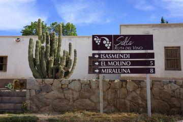 route des vins en argentine