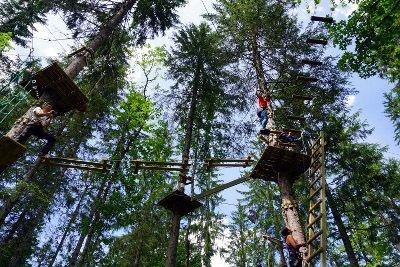 parc aventure dans les arbres