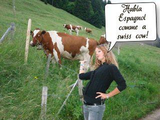 parler comme une vache espagnole