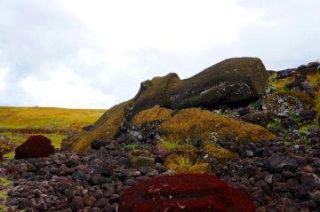 moai couche