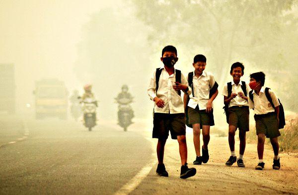 haze écoliers
