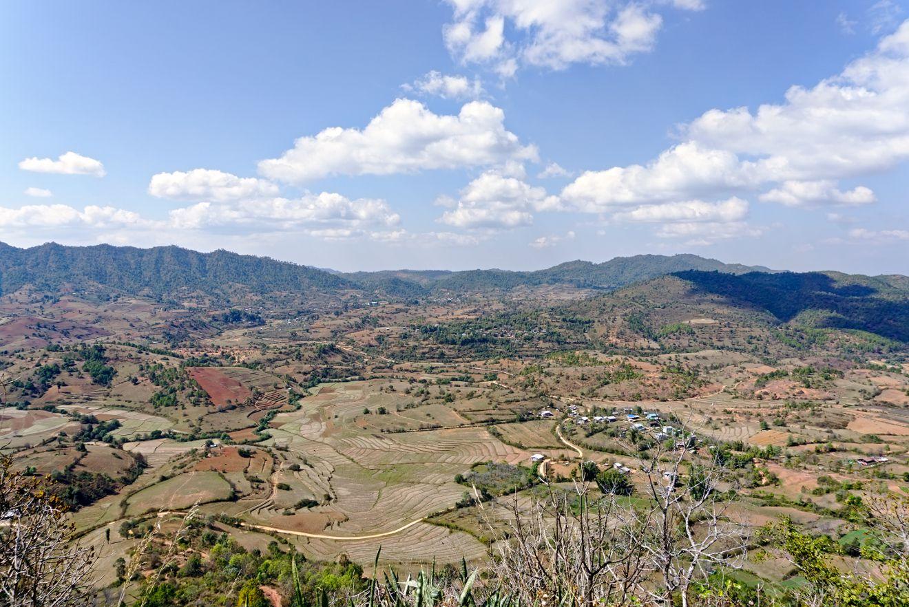 les champs en culture en Birmanie