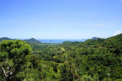 point de vue, Indonésie