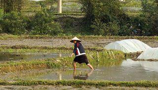 tenue traditionnelles vietnamiennes