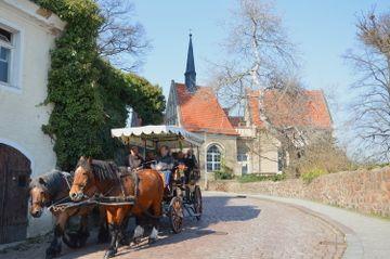 calèche et chevaux