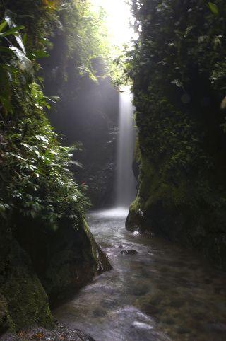 cascades de Mindo