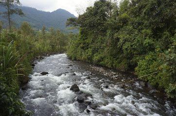 la rivière qui passe dans Mindo