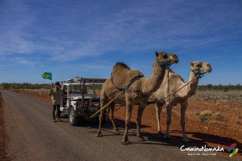 4x4 chameaux