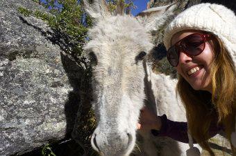 un selfe avec une mule