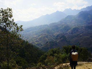femme hmong dans les montagnes de sapa