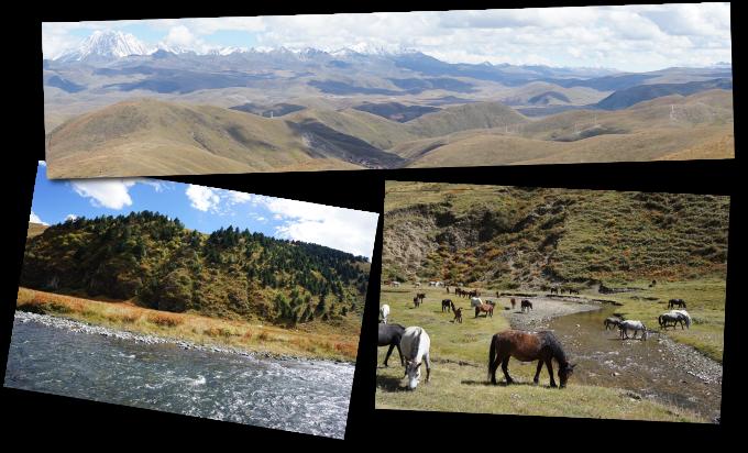 plateau tibetain
