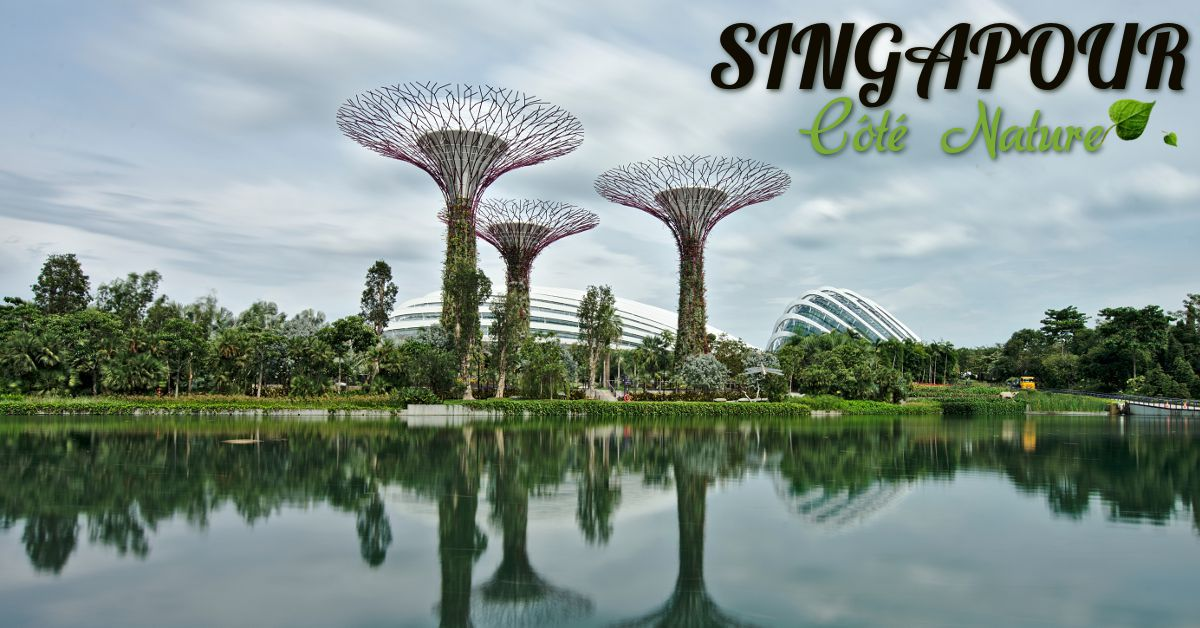 Gardens by the Bay, Singapour