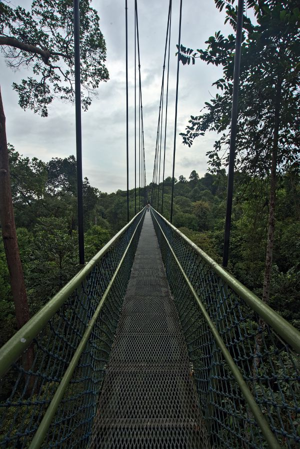 pont suspendu singapour
