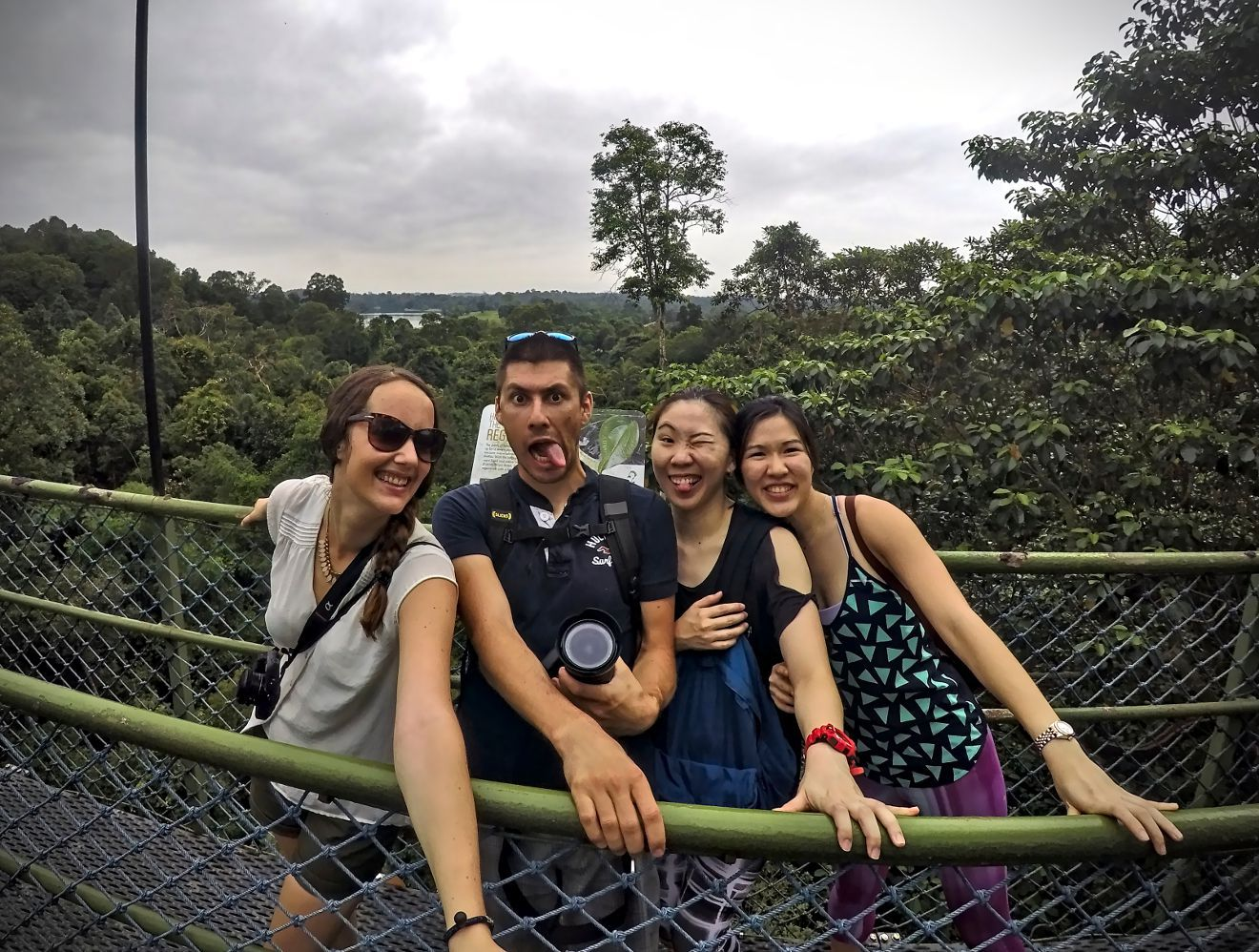 tree top walk singapour