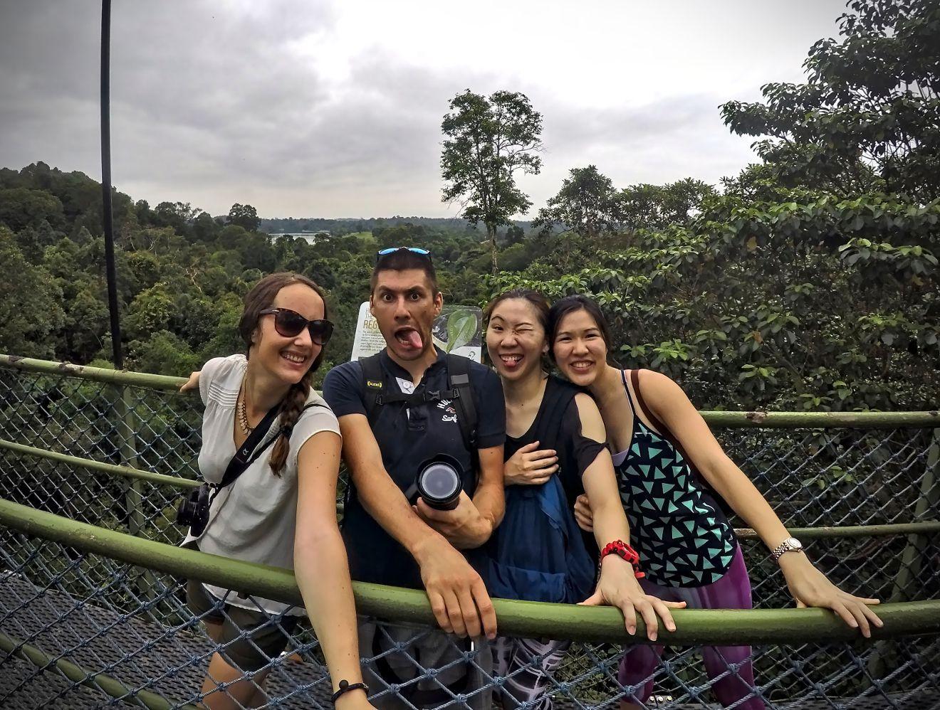 tree top walk singapour