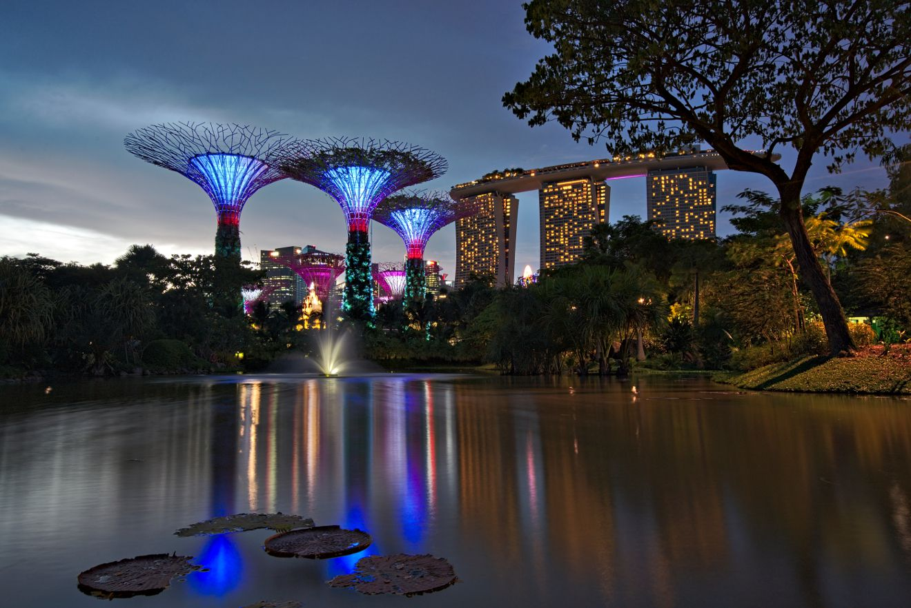 le gardens by the bay de nuit