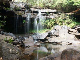 cascade jungle