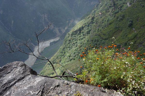 high trail