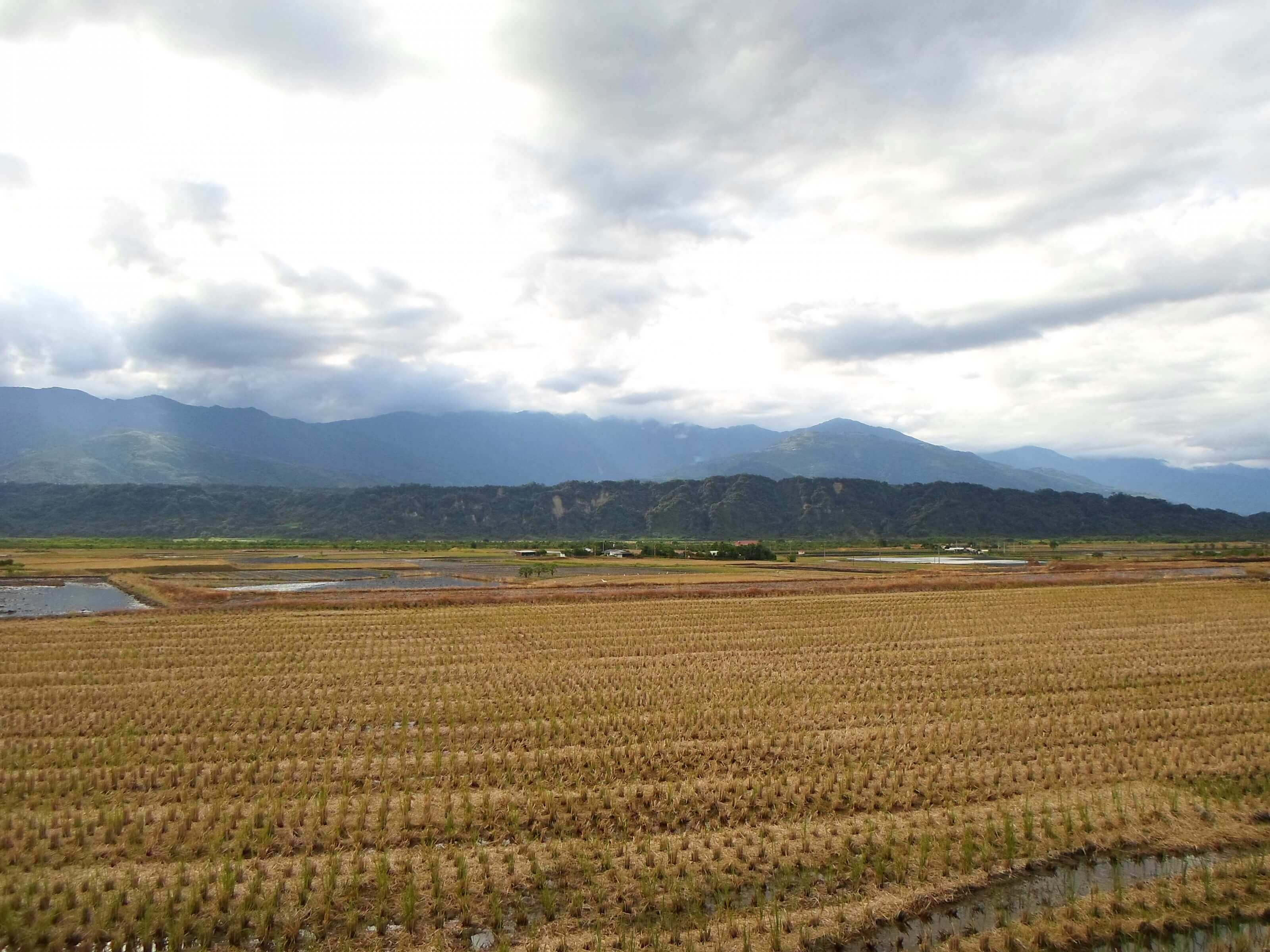 nature Taiwan