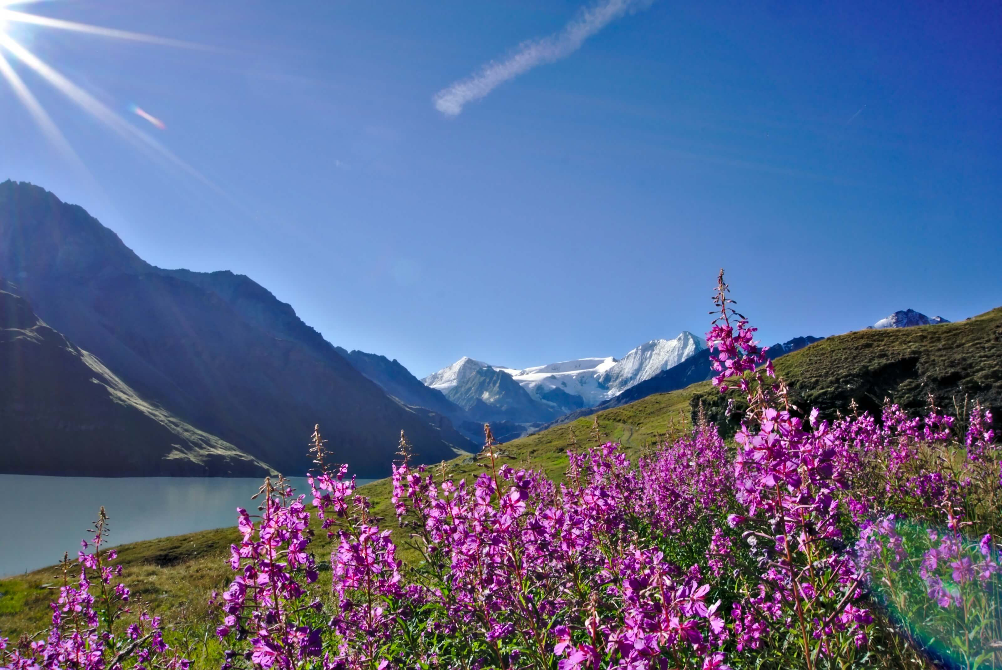 randonnée valais suisse