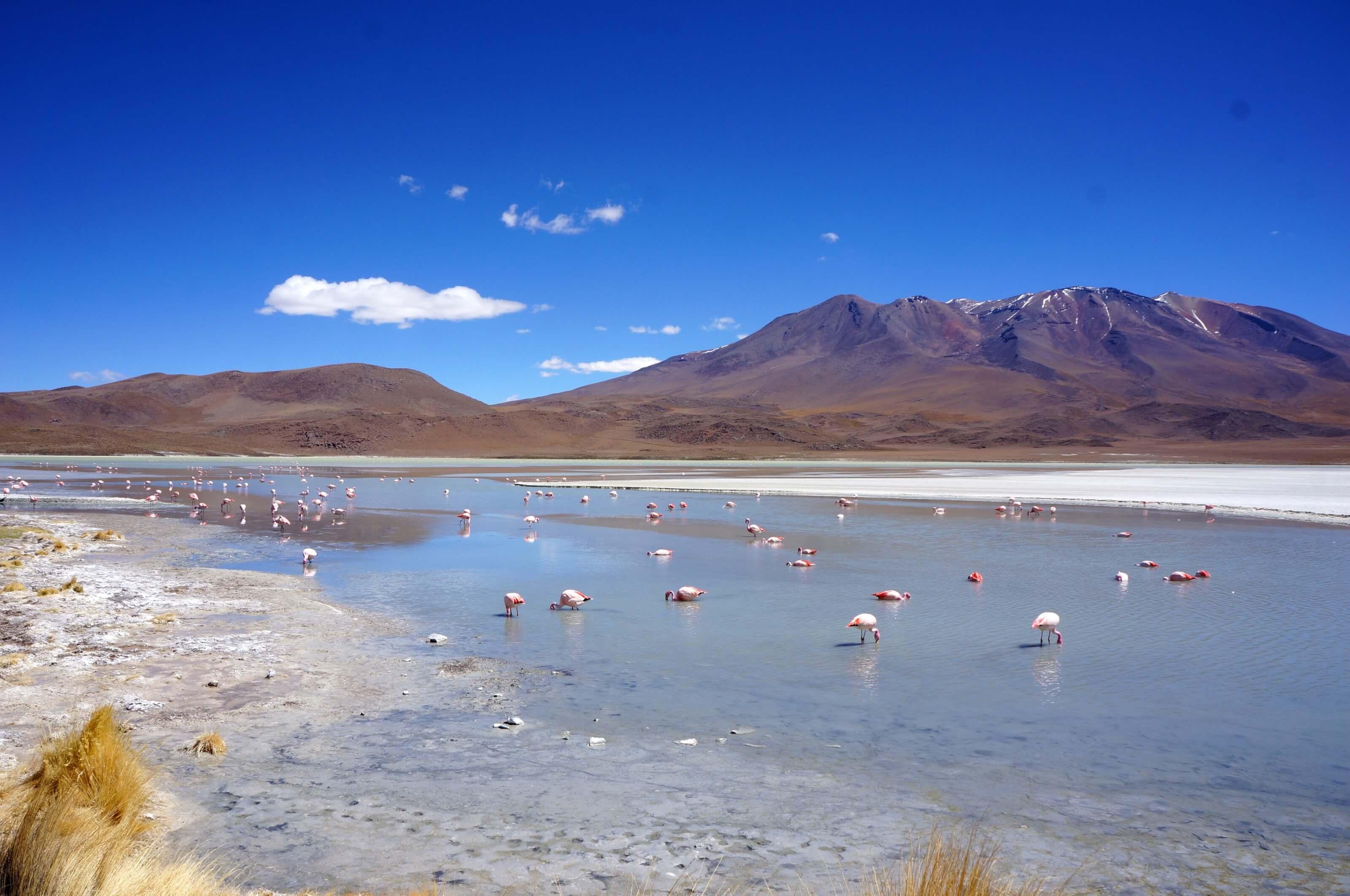 uyuni et sud lipez, Bolivie