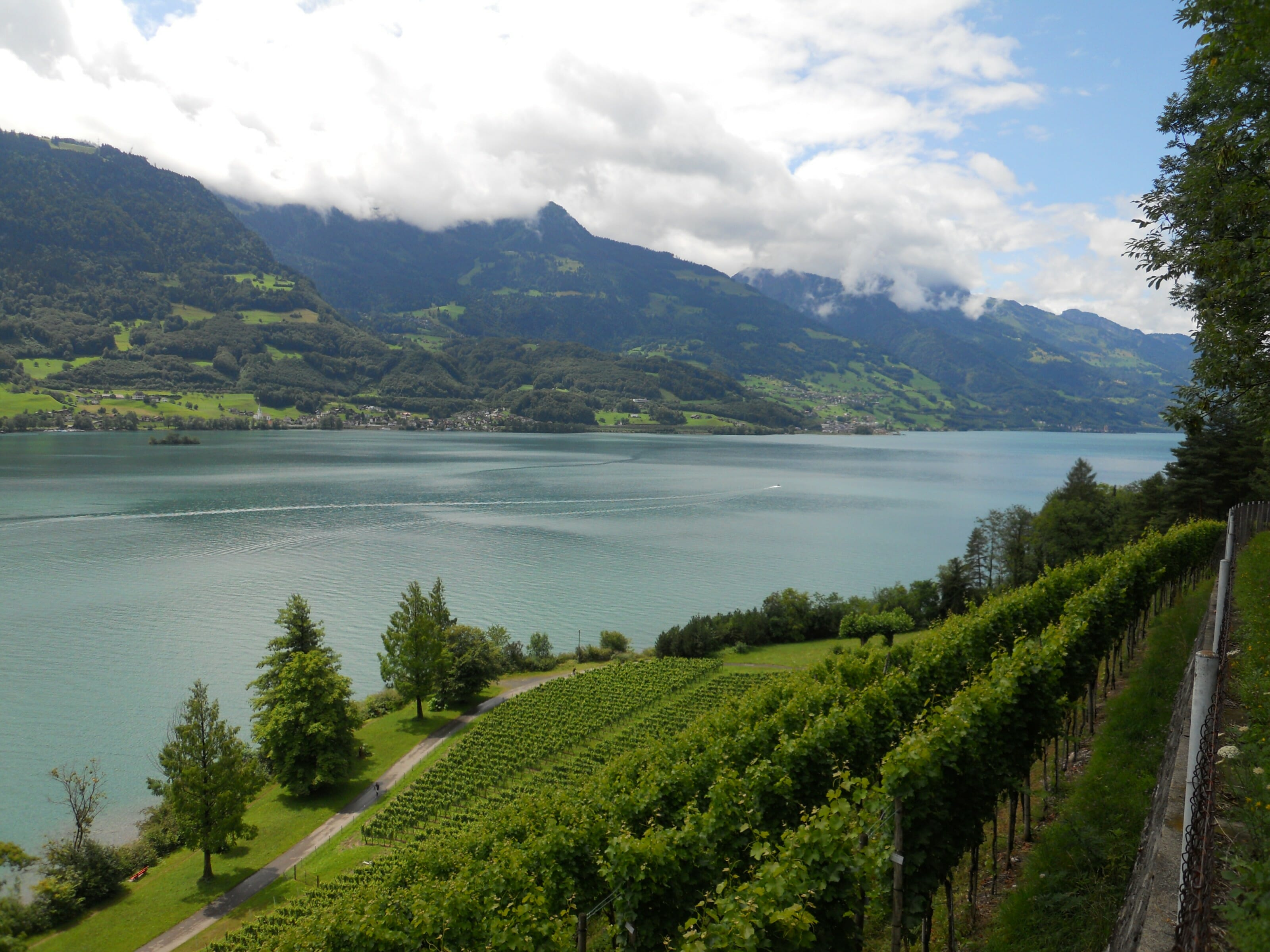 Wallensee dans le canton de st gall en suisse