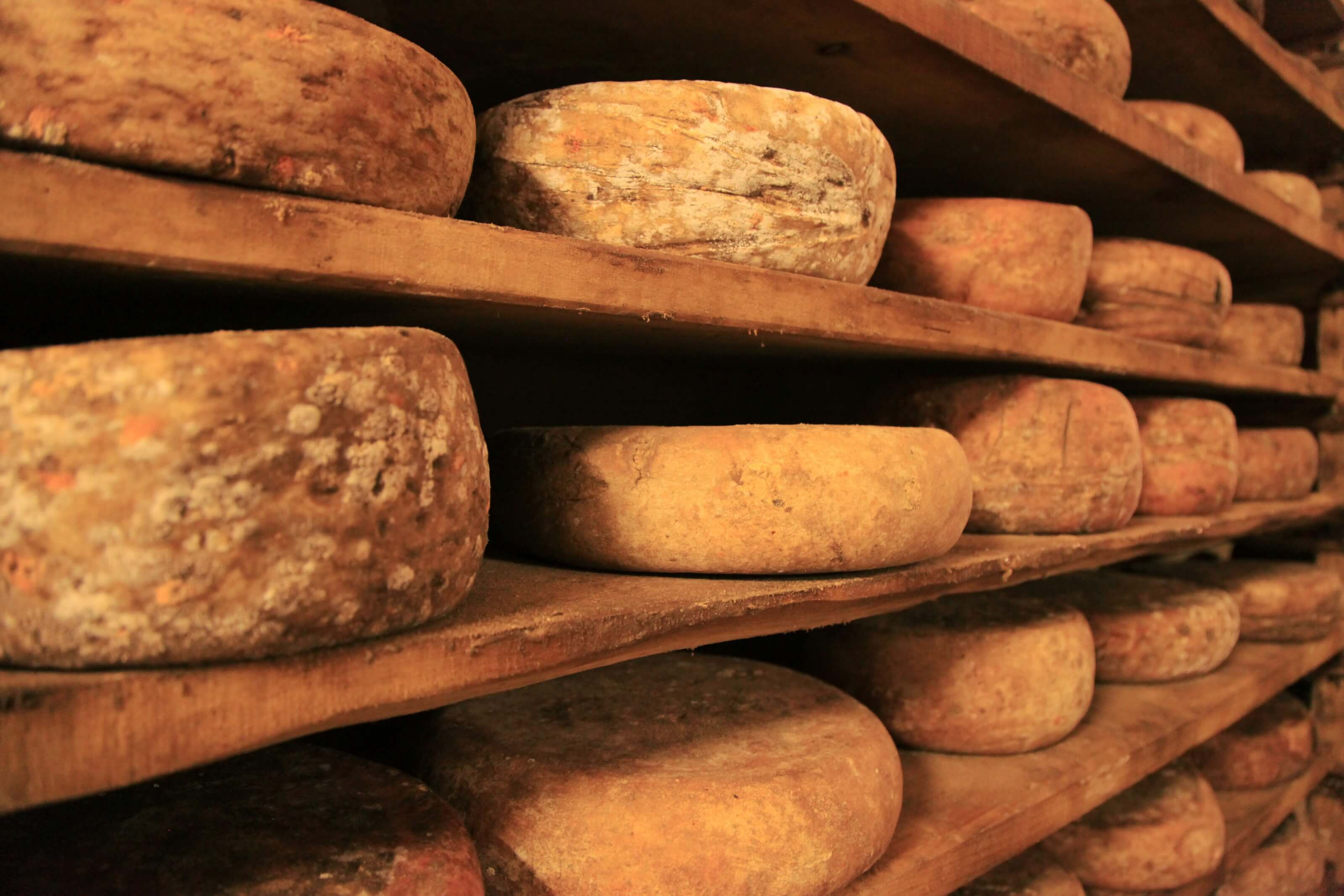 le fromage suisse