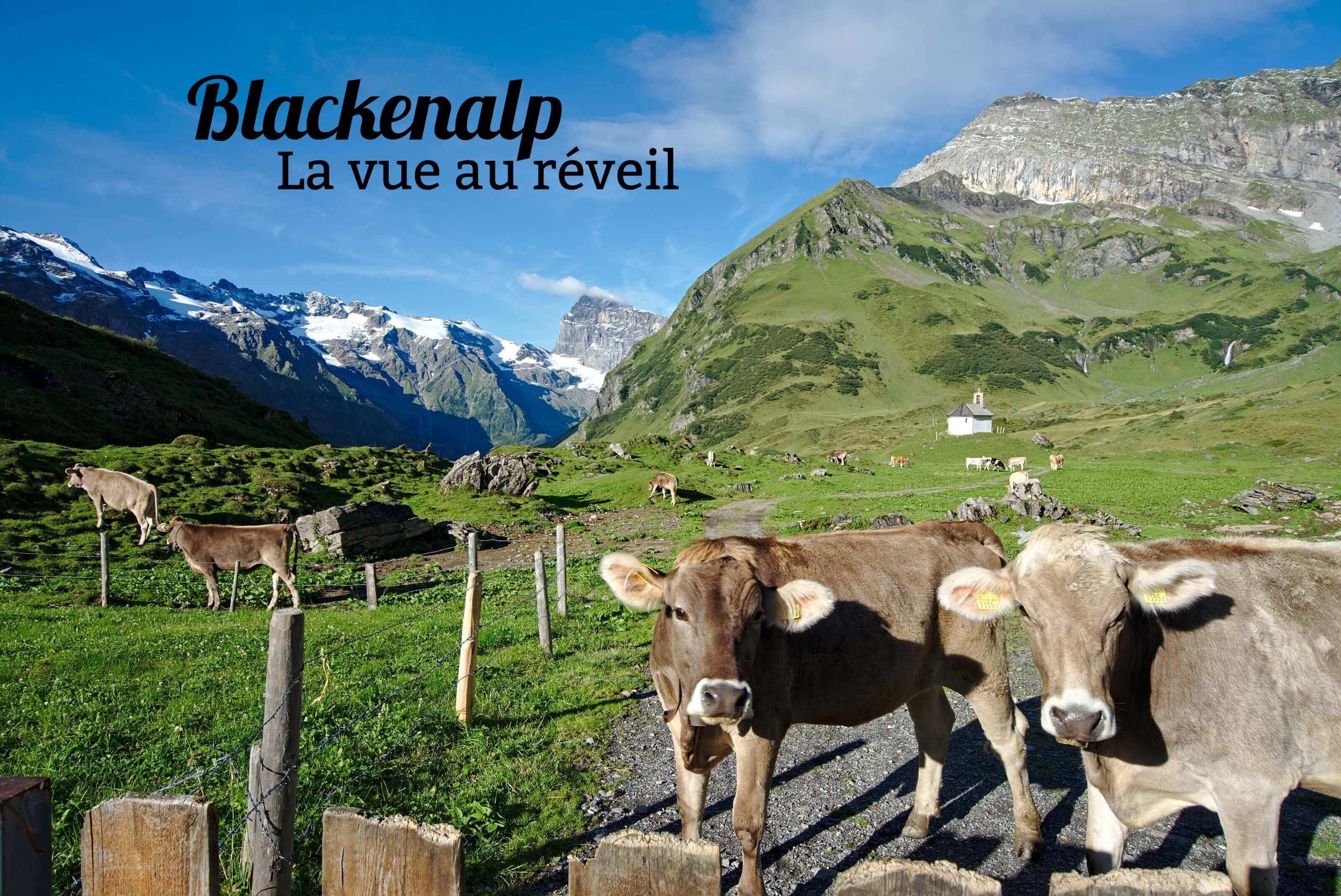 alpage suisse blackenalp