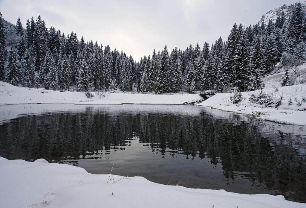 sassex pond