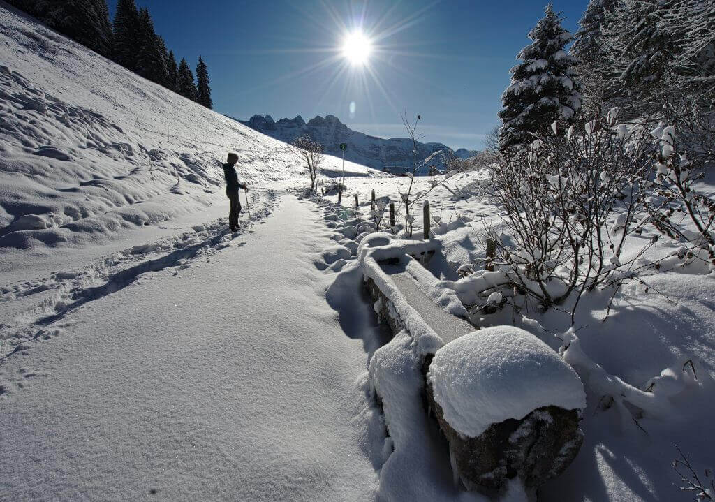 snowshoeing in morgins