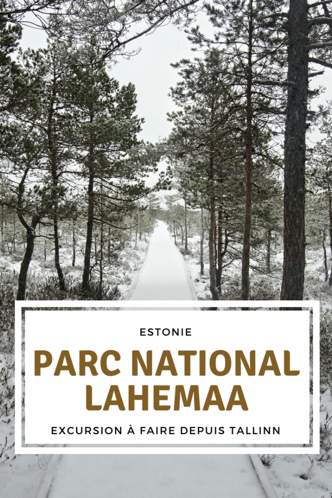 parc de Lahemaa en hiver