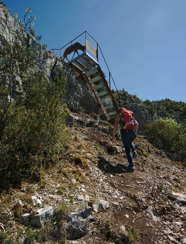 escalier-roquefort
