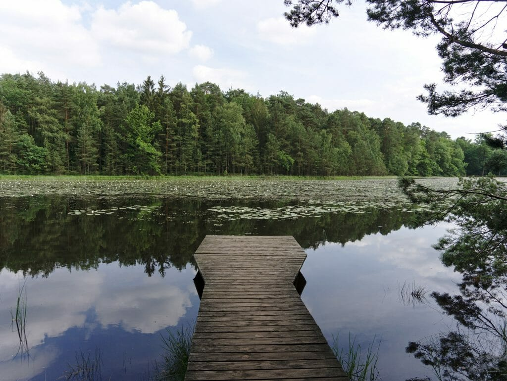 liesbach pond