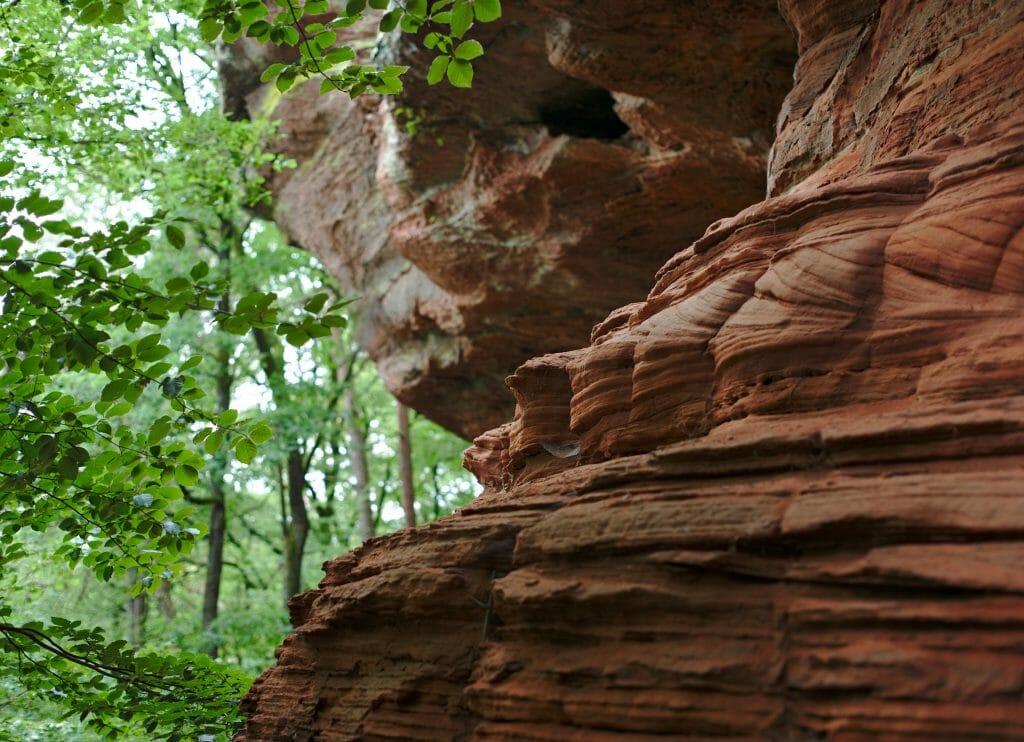 détails dans la roche, altschlossfelsen