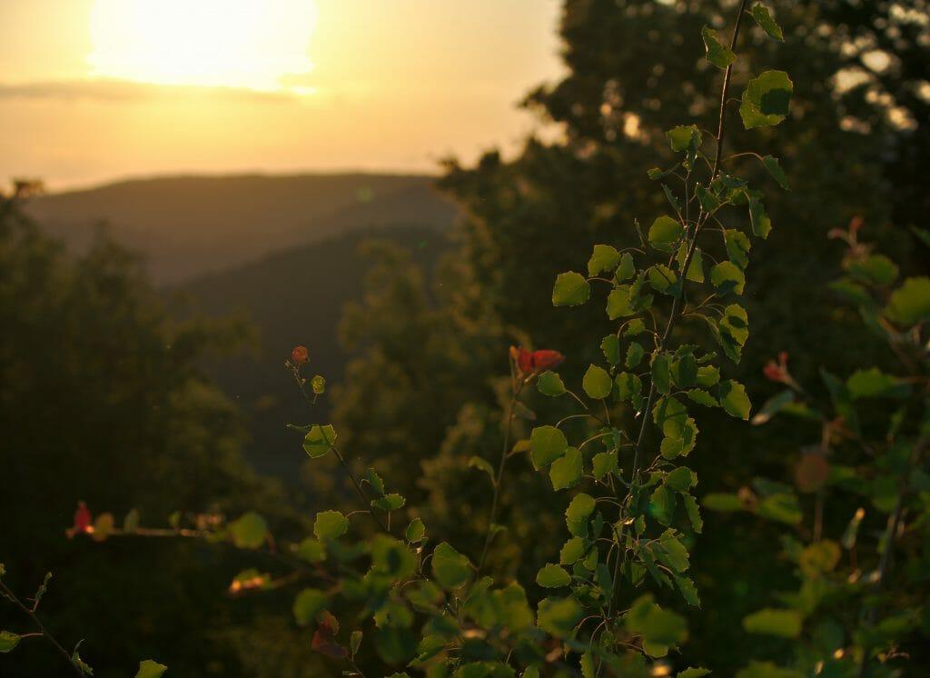 coucher de soleil falkenstein