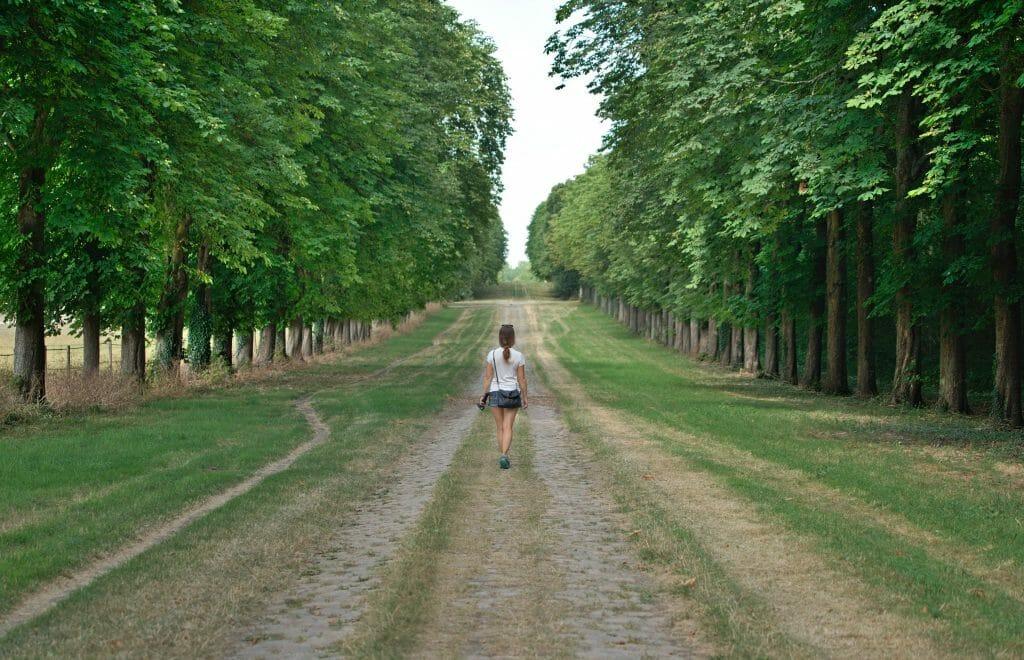 Parc de Versailles