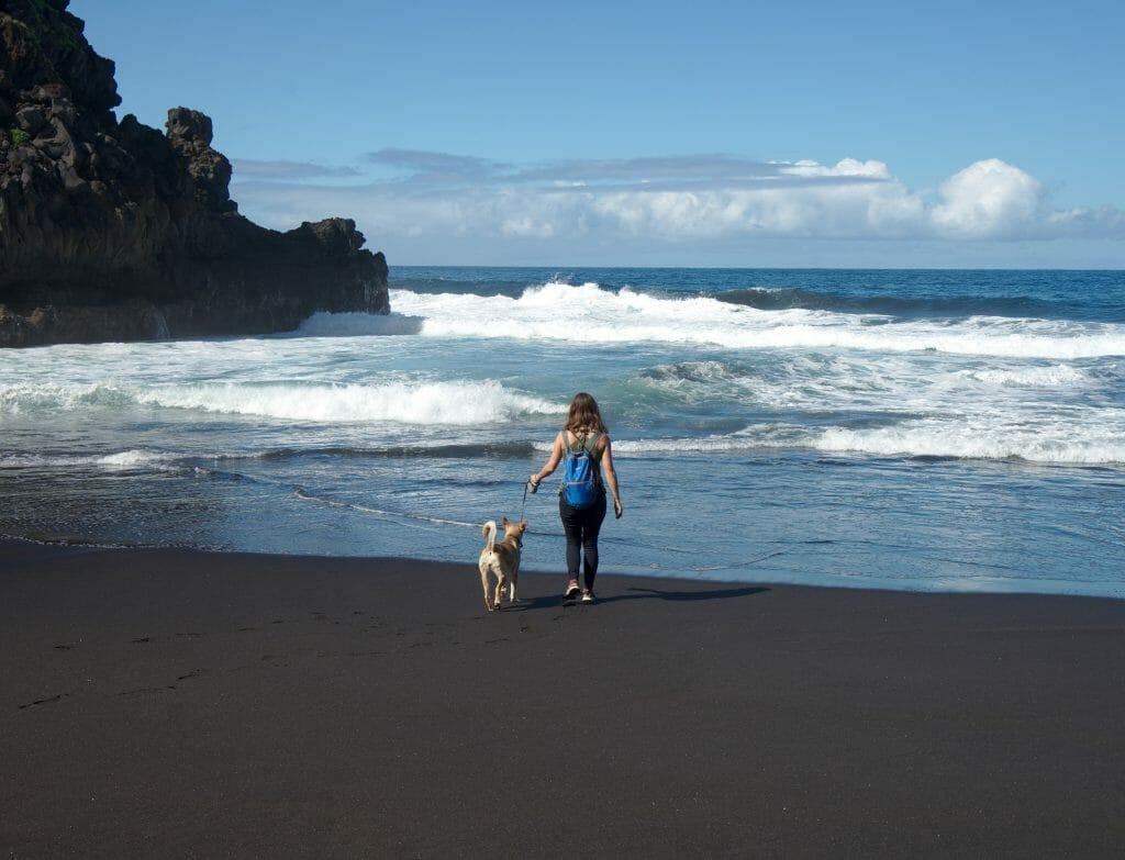 plage tenerife