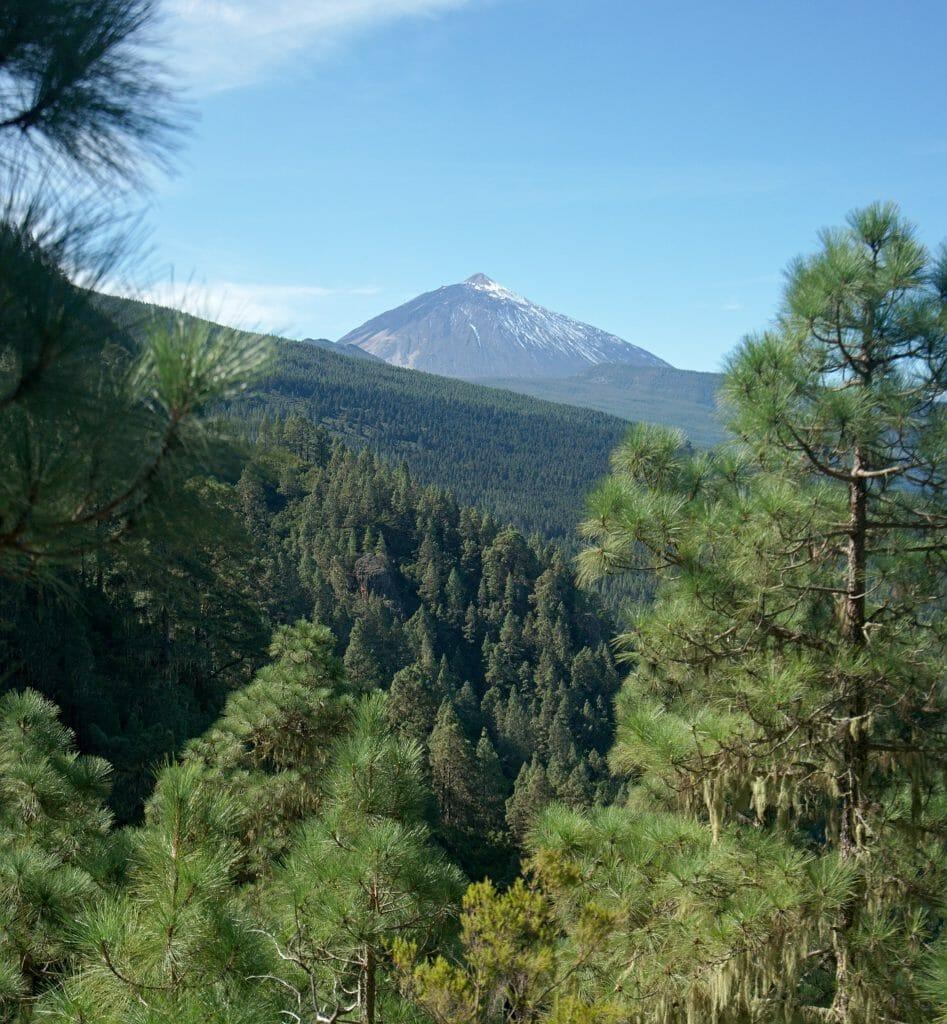 volcan teide from la Caldera