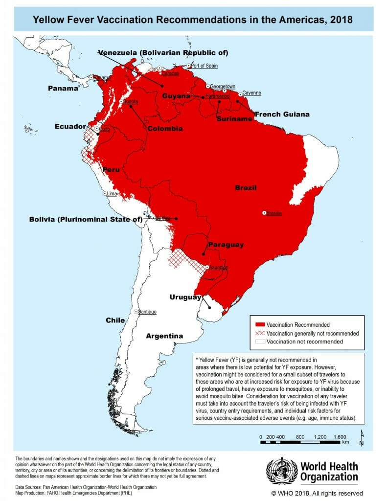 yellow fever south america