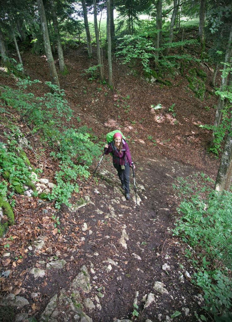 sentier en forêt raide