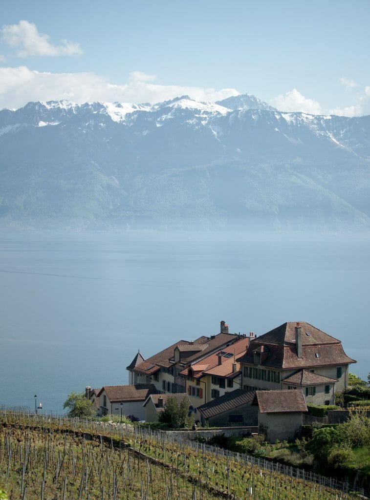 panorama lavaux
