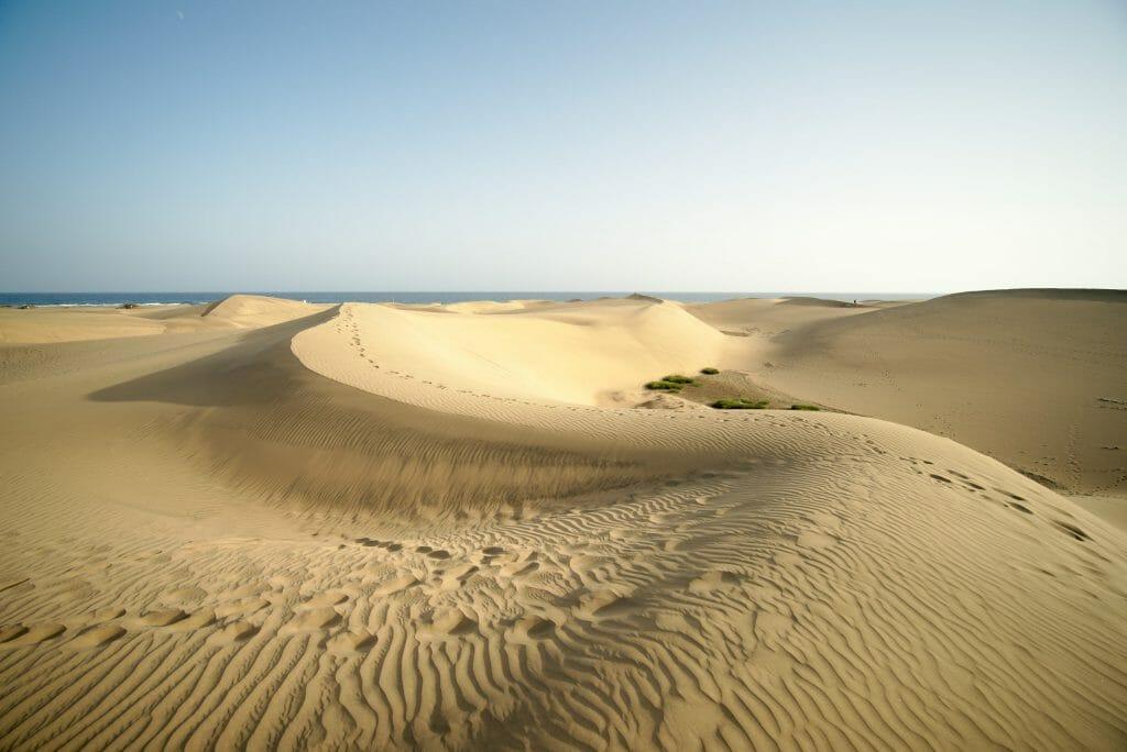dunes grande canarie