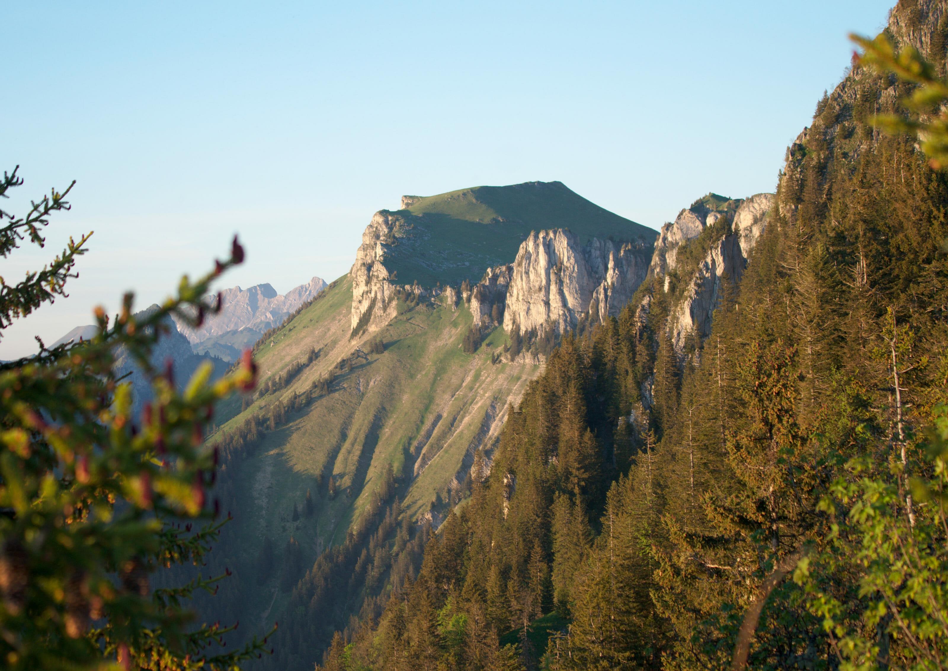 malatraix ridge