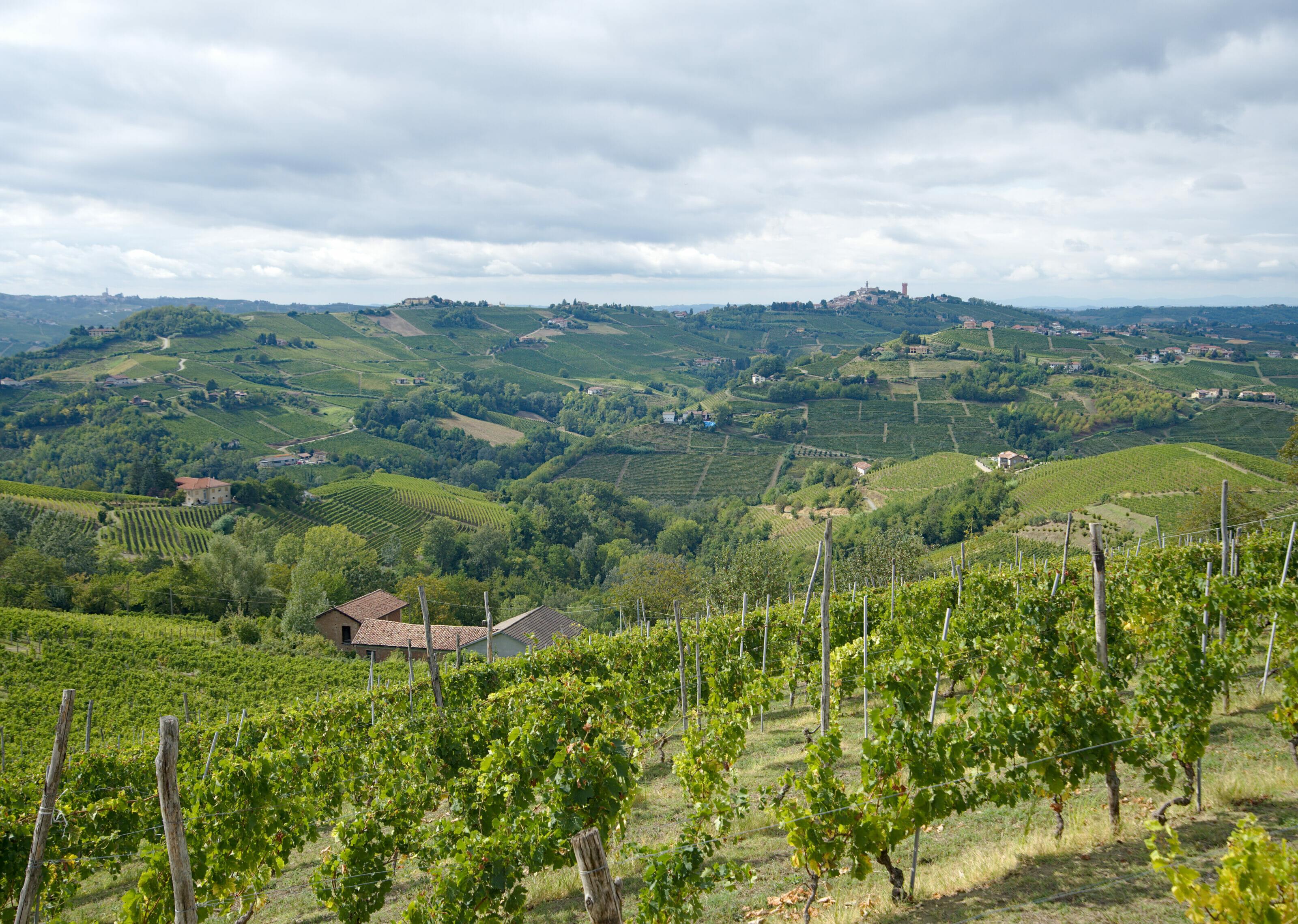 collines du Piémont