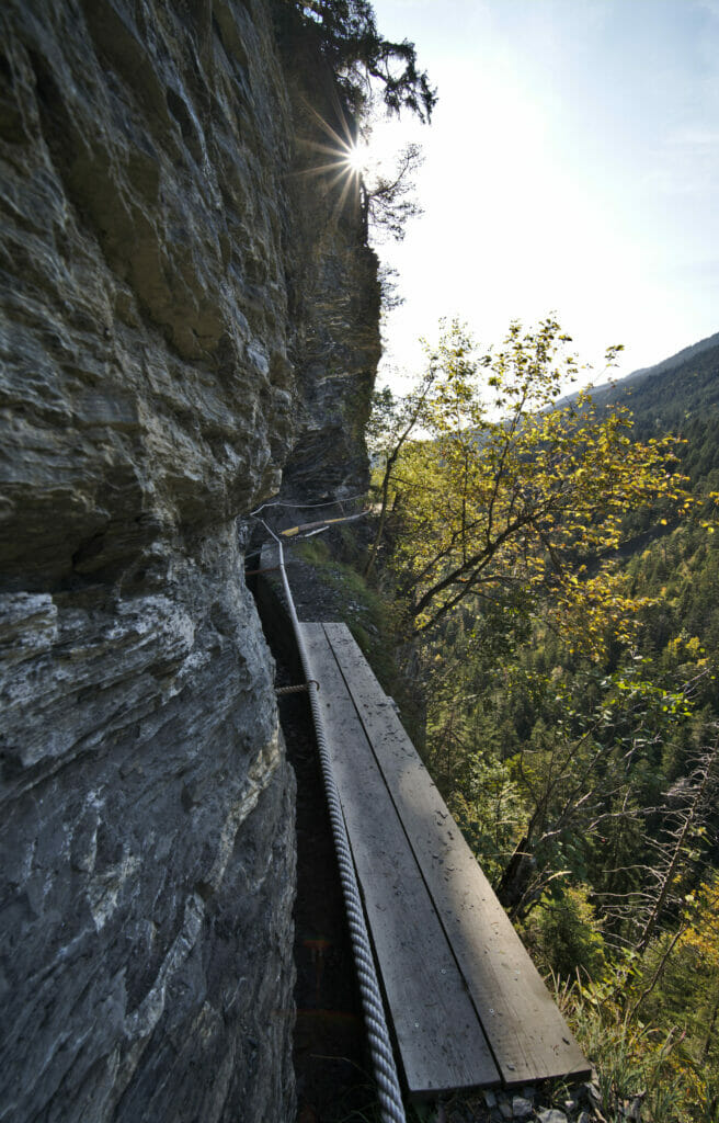 bisse vertigineux
